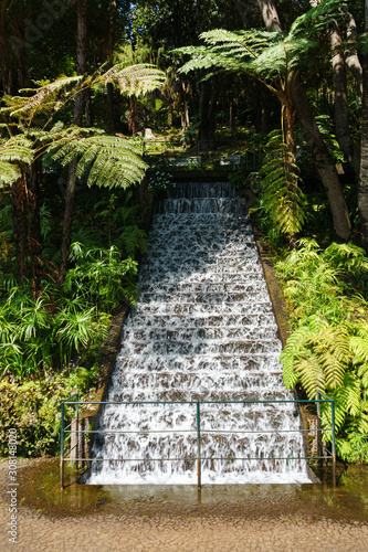 A tropical show garden with water feature on stairs with exotic plants