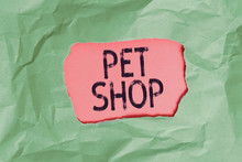 Handwriting Text Pet Shop. Conceptual Photo Retail Business That Sells Different Kinds Of Animals To The Public Green Crumpled Ripped Colored Paper Sheet Centre Torn Colorful Background
