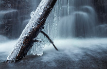 Icy Log, Milky Waterfall