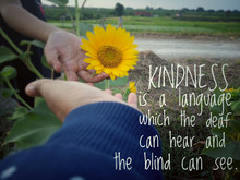 Inspirational Quote - Kindness Is A Language Which The Deaf Can Hear And The Blind Can See. With Blurry Background Of Two Young Women Touch Sunflower Blossom In The Garden As Illustration.