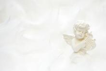 演奏する天使
