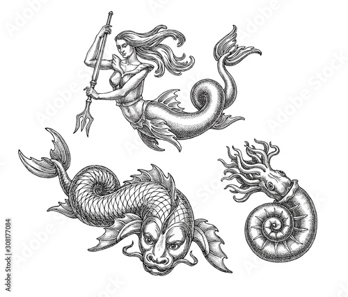 Hand drawn illustration in the engraving  style, fantastic sea animals and mermaid Fototapet