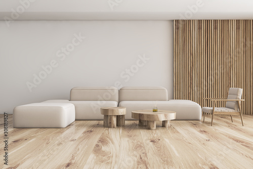 Obraz White and wood living room with sofa and armchair - fototapety do salonu
