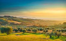 Maremma Sunset Panorama. Count...