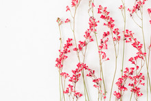 Red Wildflowers Pattern On Whi...