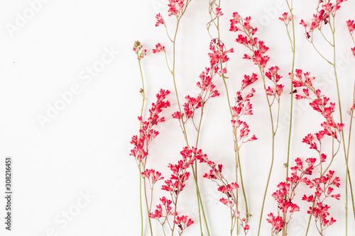 Poster Pays d Asie Red wildflowers pattern on white background.