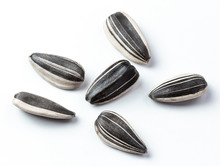 Sunflower Seeds Isolated White...