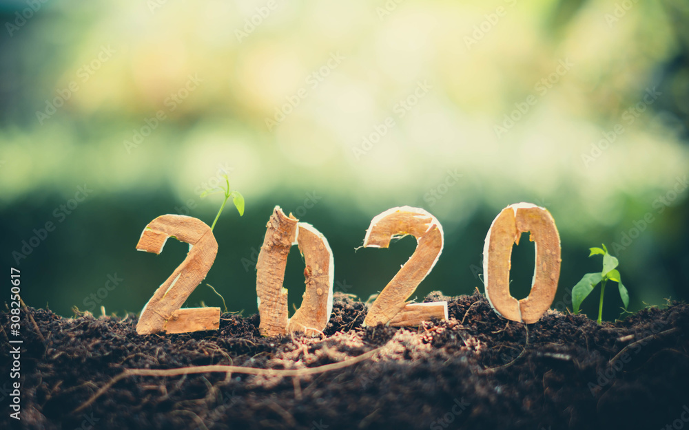 Fototapeta Happy New Year 2020 social media video.2019-2020 change background new year resolution concept.wood text on ground.Perfect for your invitation or office card