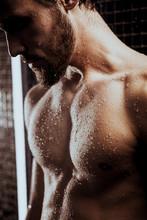 Muscular Bearded Caucasian Man...
