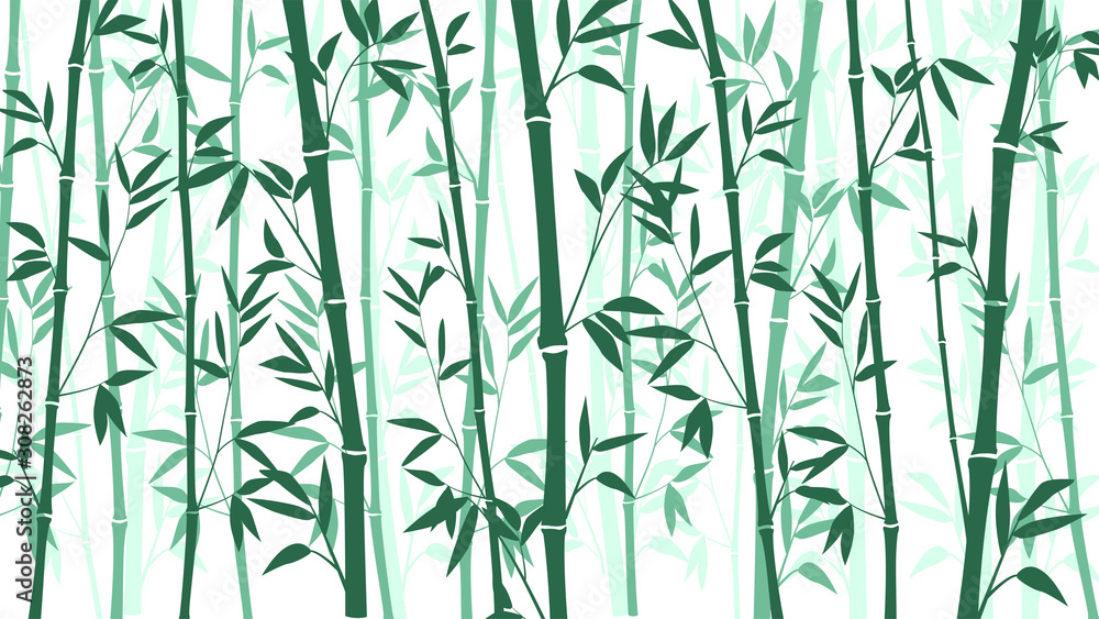 Bamboo forest for background EPS 10