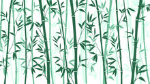 Bamboo Forest For Background E...
