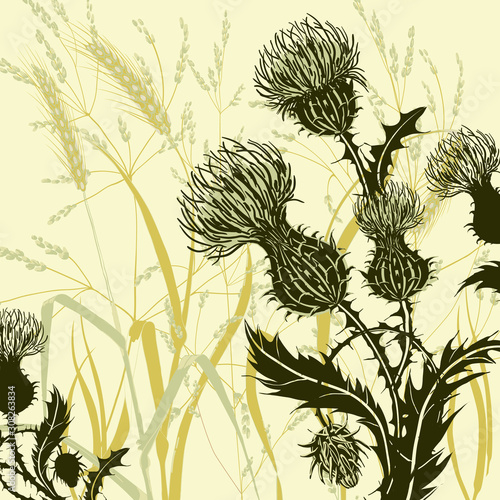 Fotografia Silhouette of thistle on background meadow plants and cereals