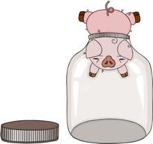 Pig Head Stuck In Empty Glass ...