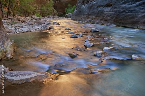 Fotografia, Obraz Landscape, Virgin River Narrows, captured with motion blur, Zion National Park,