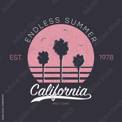 Photo California design for t-shirt with palm trees, sun and gull birds