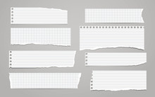 Pieces Of Torn Horizontal Whit...