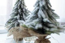 Small Christmas Tree On The Ta...