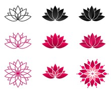 Collection Of Blooming Lotus F...