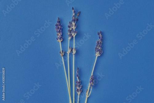 bouquet-of-violet-lavender-flowers