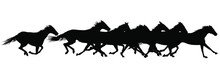 Vector Silhouettes Of Horses R...