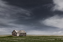 A Dilatidated Broken Down Shack In A Field In The Praries, Canada