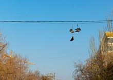 Old Ripped Sneakers Hang On El...