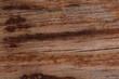 Close-up shot, light brown wood pattern
