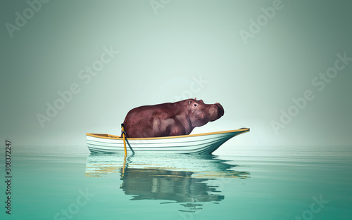 hippo in a boat Tableau sur Toile