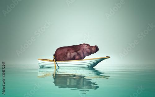 Carta da parati hippo in a boat