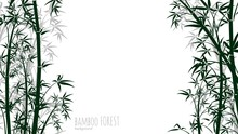 Bamboo Forest Background. Asian Plants Silhouettes Backdrop. Chinese, Japanese Tropical Rainforest Vector Banner. Illustration Japan Branch, Chinese Tree Bamboo