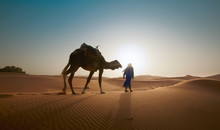Blur Photo - Abstract Image For The Background. A Man With A Camel Travels Through The Desert In Backlight.