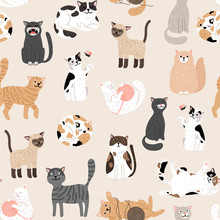 Kitty Seamless Pattern. Color ...