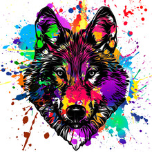 Monochrome Artistic Wolf Muzzle On Colored Background