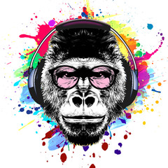 Monkey head black and color background, digital art