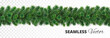 Seamless Christmas tree garland. Pine tree branches decoration