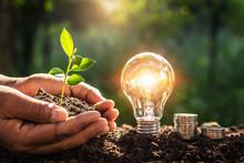 Energy Concept. Eco Power. Lig...