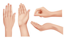 Hands Realistic. Gestures Huma...