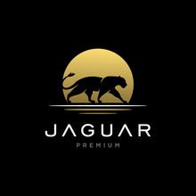 Jaguar / Cheetah / Lion Logo Design