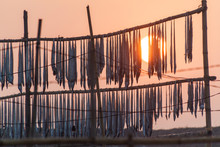 Sun Rises Above Drying Fish At...