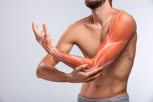 Human Arm Pain, Anatomy Of Hum...