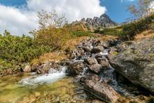 Mountain Stream In Litvorova V...
