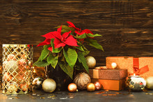 Christmas Plant Poinsettia With Decor And Gifts On Table