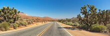 Joshua Trees Along A Road In C...