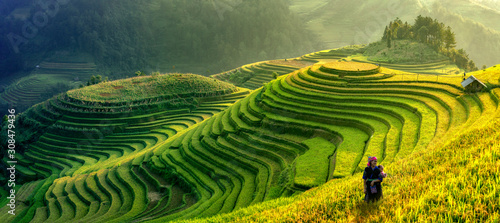 Photo Mu Cang Chai, Vietnam landscape terraced rice field near Sapa