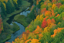 Aerial Perspective Of Autumn F...