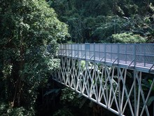 Canopy Walkway . Sky Bridge. Entrance Steel Structure Walkway On Tall Mountains With Forests At Queen Sirikit Botanic Garden In Chiang Mai Thailand.