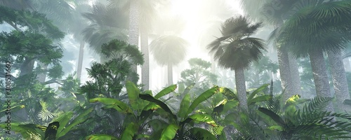 coconut-jungle-in-the-morning-in-the-fog-forest-in-the-haze-3d-rendering