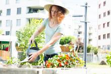 Young Woman Gardening, Urban G...
