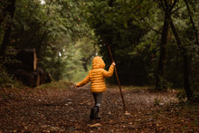 Young Child With Stick Walks I...