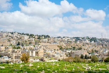 Muslim Cemetery And Old Town, Hebron (al-Khalil), West Bank, Palestine